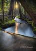 Ramona Creek at Sunset