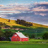 Patriotism in the Palouse
