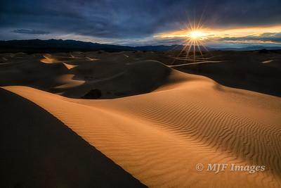 Dune Sunstar