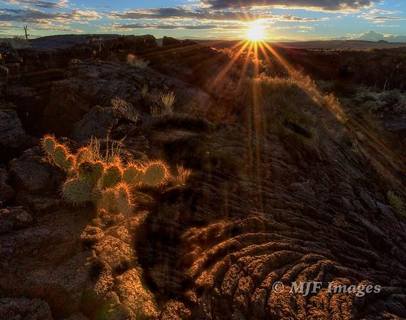 New_Mexico_2015_167