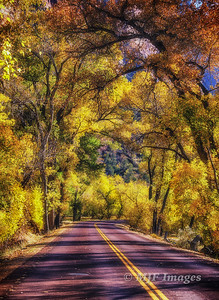 Zion Canyon Road