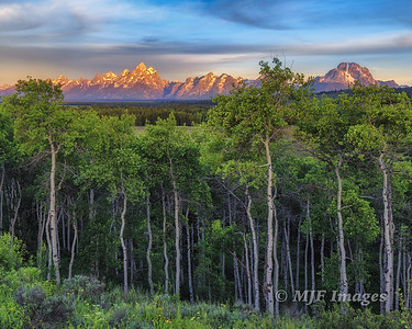 Grand_Tetons_June-2015_005