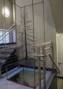 Metal tree sculpture in the stairwell