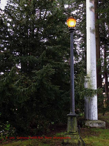 "Old Fashioned street lamp in the old bird sanctuary near the ""Old Main"" building.  This was put it when Western was the ""Whatcom Normal School"", probably around 1921 when the sanctuary was established to honor Professor Ida Agnes Baker."