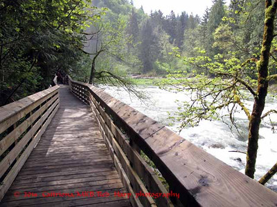 Boardwald to Lower Snoqualmie Falls viewpoint