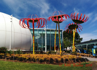 Sonic Boom by Dan Corson (2013).  40ft tall; 20 ft diameter;  photo voltaic cells power the chorus of sounds each flower produces when people move around it.  Pacific Science Center