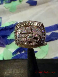 """We are 12"" Seahawks exhibit Superbowl Seahawks ring"