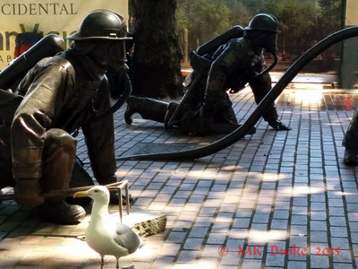 gull amid the firefighters (memorial sculpture)