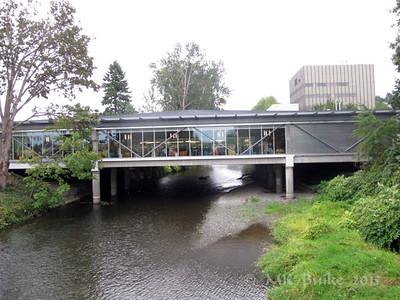 Still spans the river