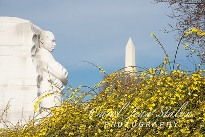Martin Luther King Jr. Memorial-8