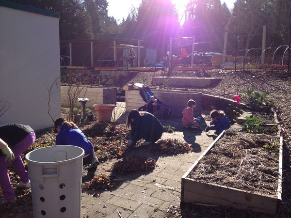 AmeriCorps alum Lisa Clifton organized a clean-up at Robinwood Community Garden (CAP project) and Community Center in West Linn, OR on MLK Day 2014.