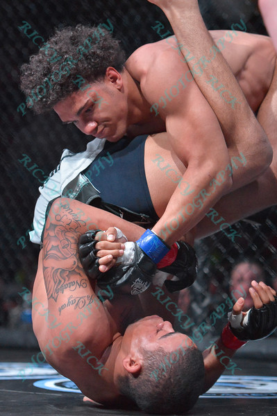 During the 7th match of the Mixed Martial Arts match between MARCUS BROWNLEE (blue tape) and LUCAS CLAY (red tape) at the Fight Hard MMA held at the Family Arena in St. Charles MO.