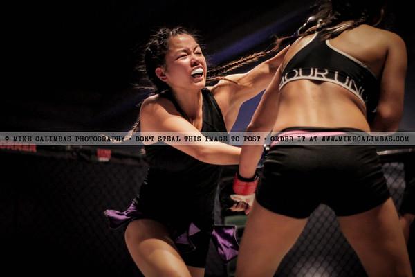Fury Fighting Championship 4 - February 13, 2015