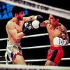 Glory38 Fight Night (132)