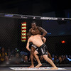 See complete event gallery + order prints and downloads at http://www.mikecalimbas.com/MMA/LEGACYFC42