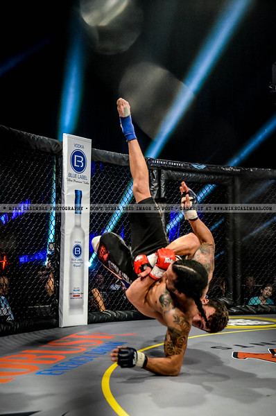 Legacy Fighting Championship 19 - April 12, 2013