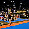 UFC Expo Day One-16