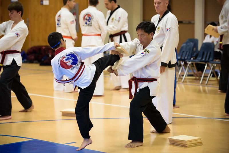 20150829-MMA_Belt_Test-264