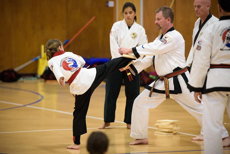 20150829-MMA_Belt_Test-282