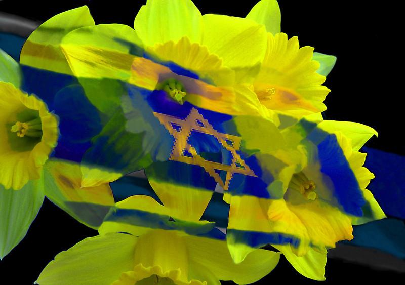 Israeli Spring, 2014<br /> Photographic Digital Collage