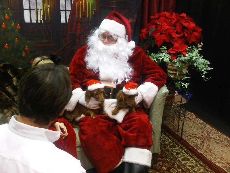 12-5-10 Santa Doxies