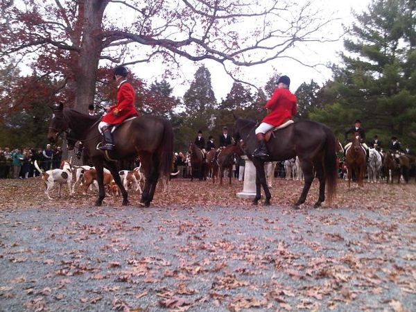 11-25-10 Blessing of the Hounds #2