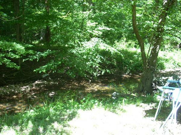 6-6-14 Sligo Creek 007
