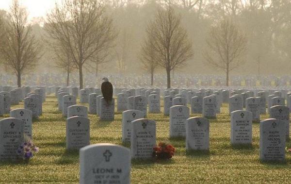 4-13-14 Vet Cemetery MN