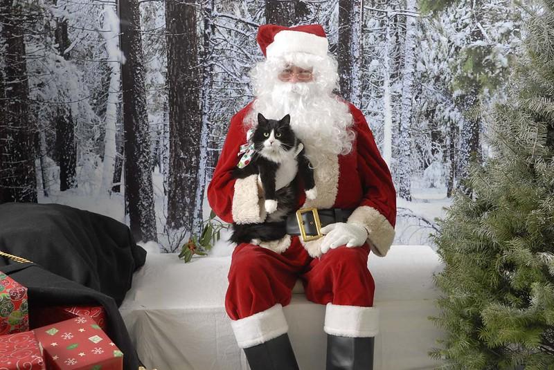 12-22-09 Tigger & Santa
