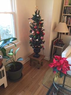 12-22-18 MF tree