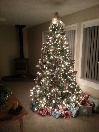12-11-12 AZ tree