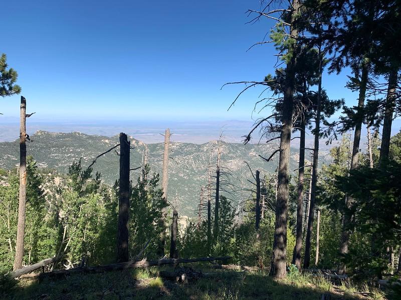 9-30-19 Mt Lemon AZ