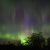 Aurora Borealas
