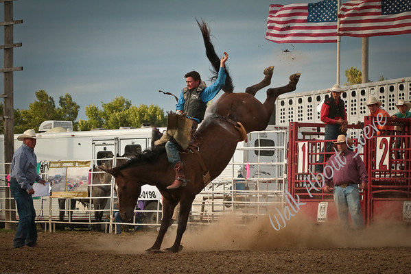 MN HIGH SCHOOL RODEO 9/3-4