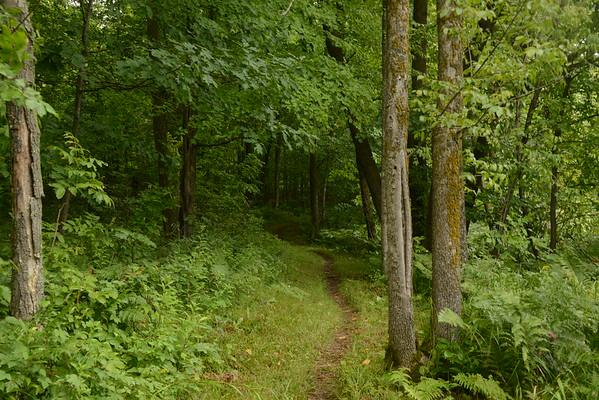 Palkie Road to Fond du Lac--6.4 miles
