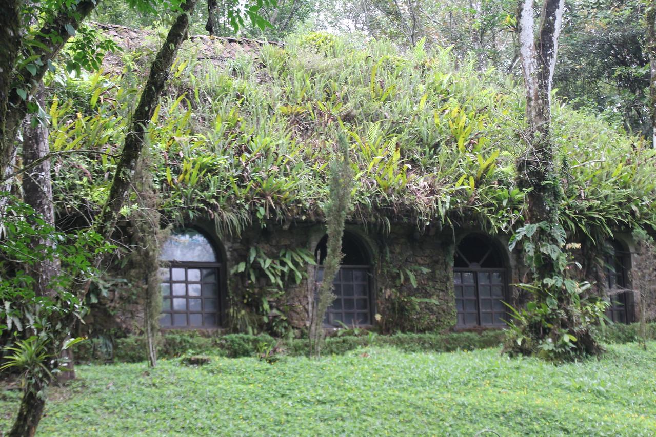 Enjoy the sights around the Selva Negro Mountain Resort -  major thumbs up from us. - Jay