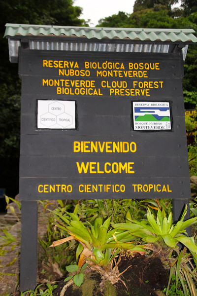 On Day 18 we started with a morning hike in Monteverde Cloud Forest Preserve. - Jay