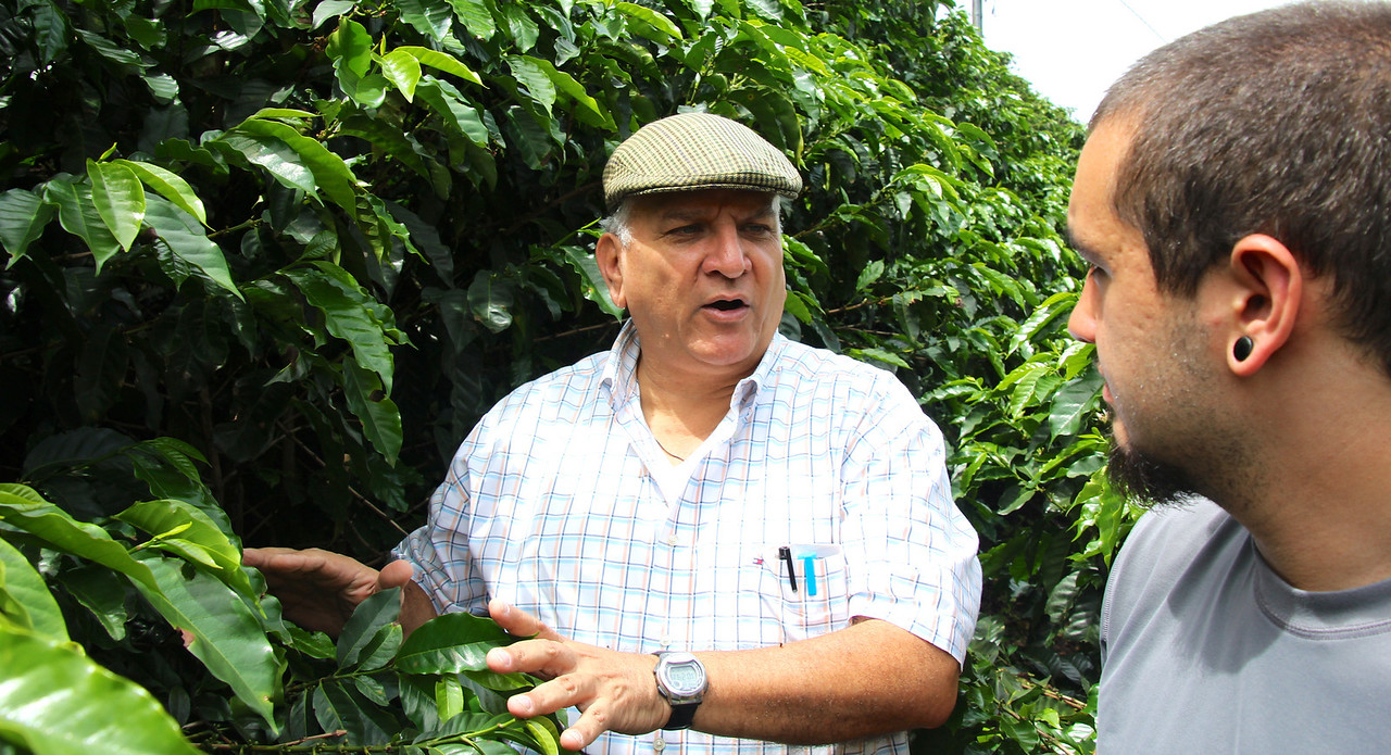 Coffee production and tourism are the two largest income sources in CR. Rodrigo is explaining the coffee production process. Basically, the beans are handpicked when deep red and harvesting by Nicaraguans begins in Nov. and continuing into Feb. (dry season in CR). The picking begins in lower elevations, with more shade grown coffee, and then proceeds to higher elevations. The beans are shipped worldwide where they are roasted.  A coffee plant is most productive for about 15 years and is normally cut back at five year intervals. The plants in this photo are very healthy (deep green, large leaves, etc.). Did we have some good coffee in the Soto home - absolutely! - Jay