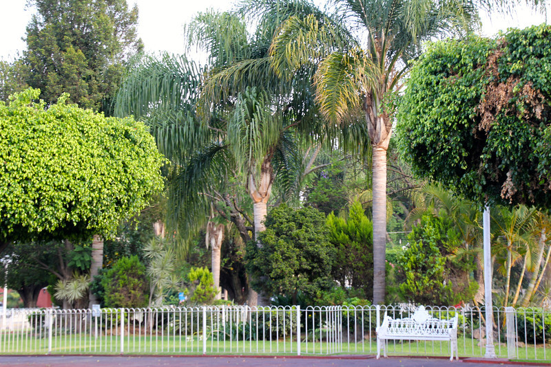 Glenn and Karen live near the school in an area call Las Fuentes (the fountains). The area holds a lot of memories for us because the first Bethel trip that Roberta and I led involved enrolling Conor (1st grade) and Nina (5th grade) in Lincoln.- Jay