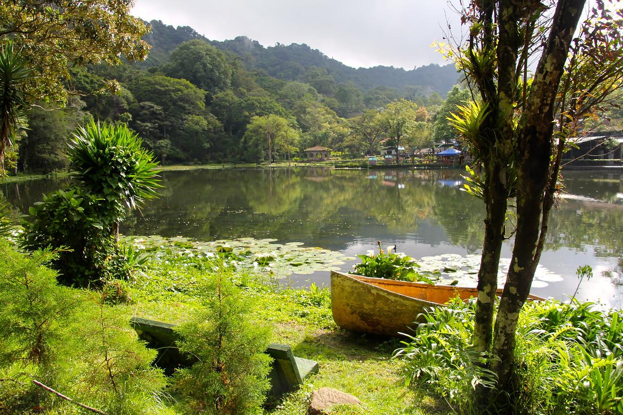 #5 - Selva Negra (Nicaragua)