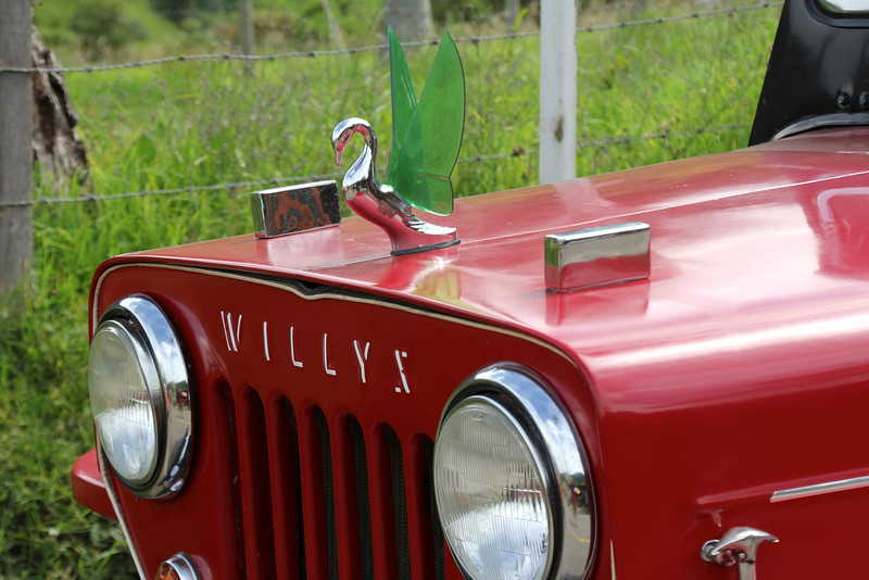 Willys, amazingly beautiful jeeps.- Conor