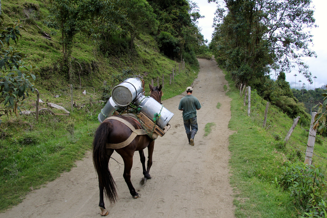 We met this farmer transporting milk to the one nearby road where it could be picked up. - Jay