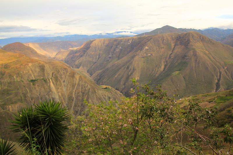 As we neared the Ecuadorian border were hit one micro-climate that was extremely dry. - Jay