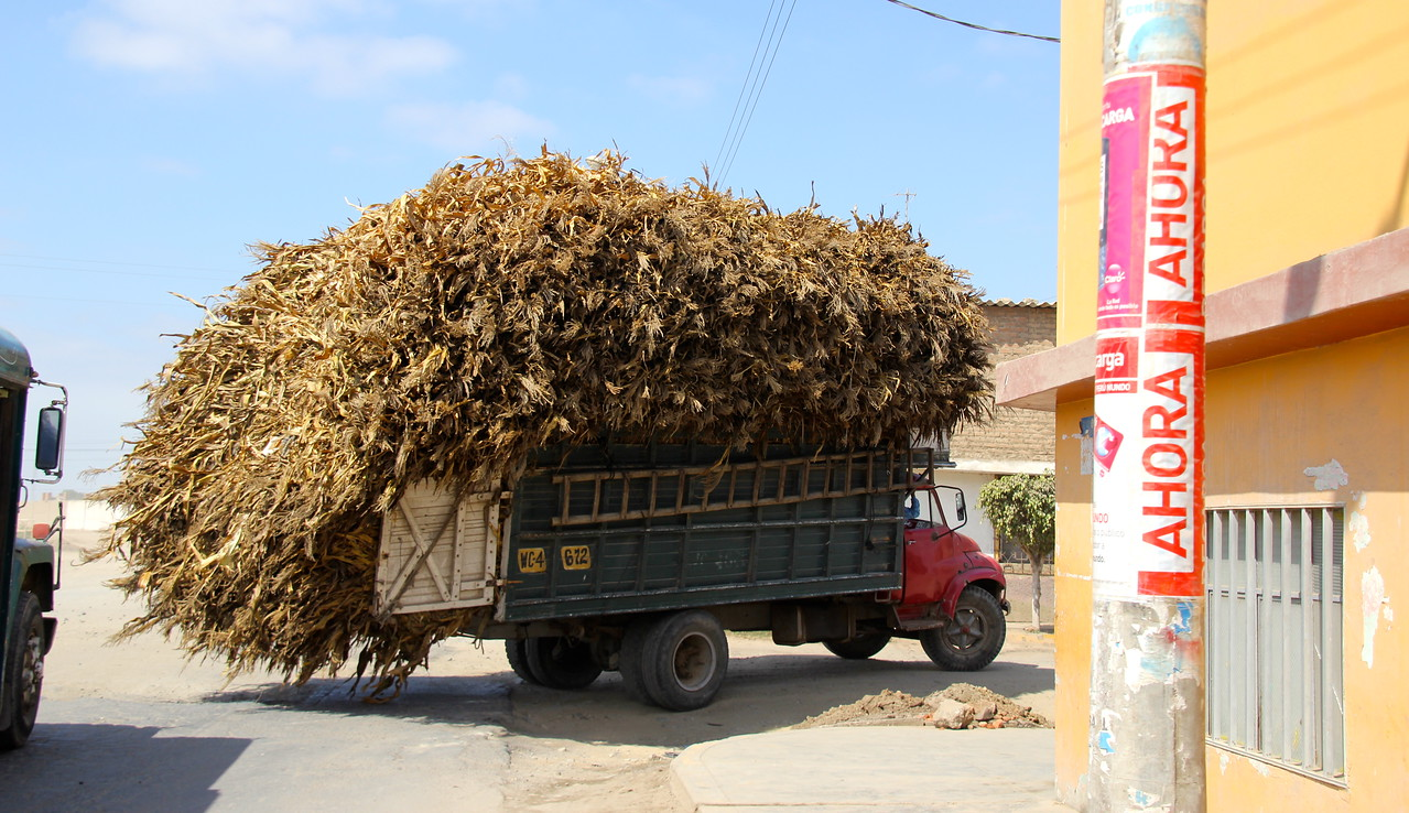 Working our way through smaller cities this is the type of thing we'd encounter (truck with dried corn stalks). - Jay