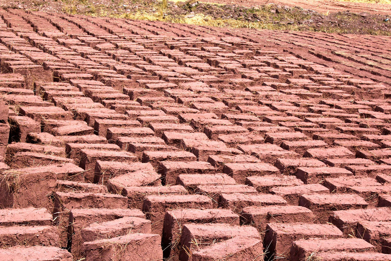All the homes and shelters were made of these hand-made bricks which were also sun-dried. - Jay