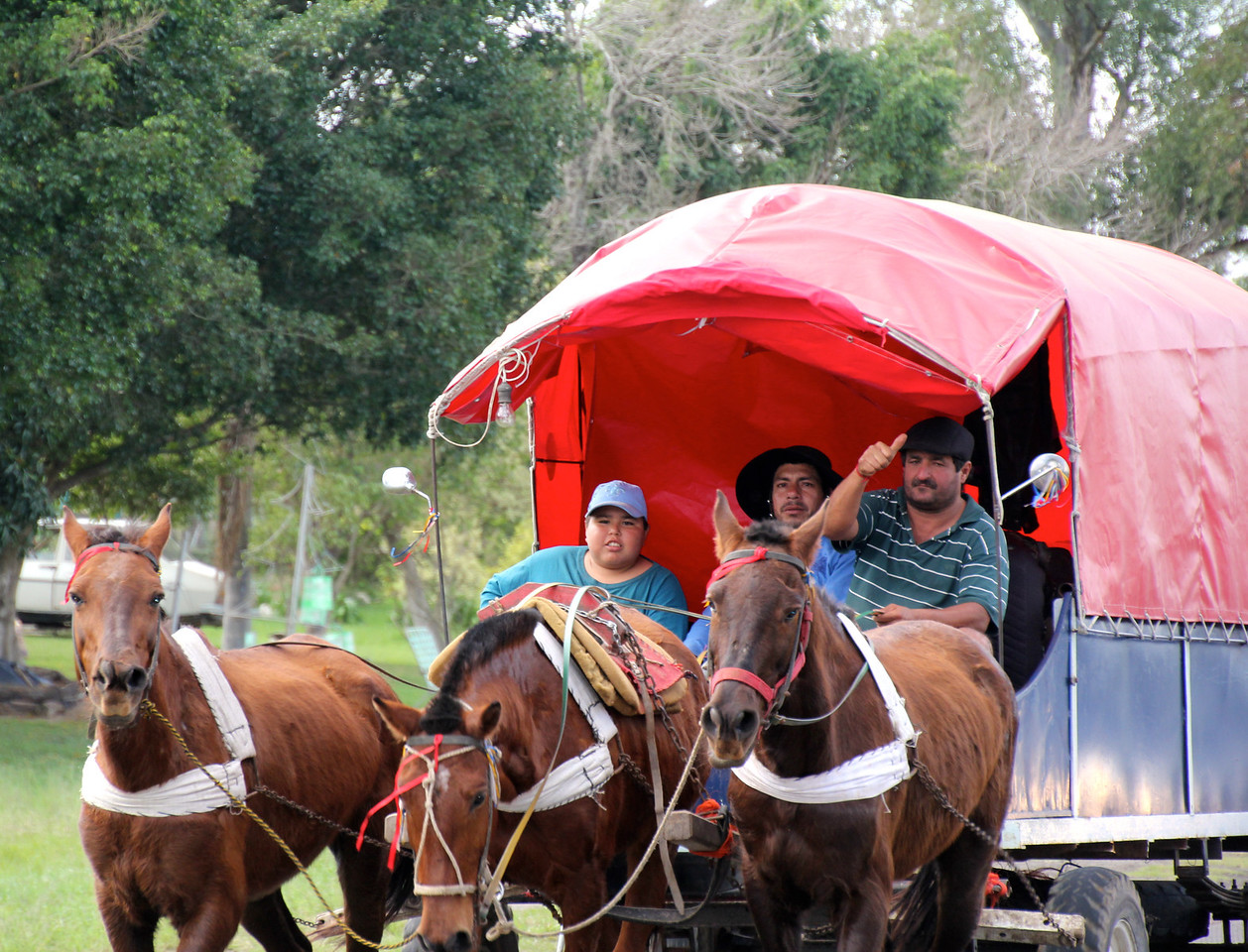 On Day 59 we starting working toward Puerto Igusau. Along the road we passed almost 1,000 gauchos and their supporters in wagons carrying supplies. - Jay