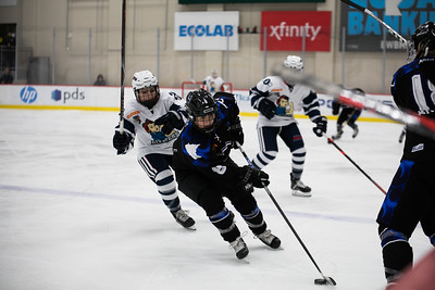 Defenseman Amanda Bouiler (8)
