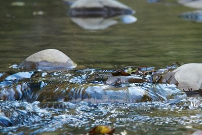 Albee creek