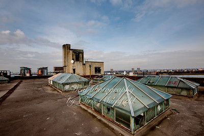 On the roof of the old Co op building