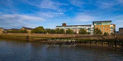 June 6th 2019.  Royal arsenal riverbank ( just east of the arsenal pier )